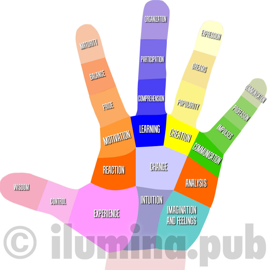 Regions of The Hand and Their Meanings