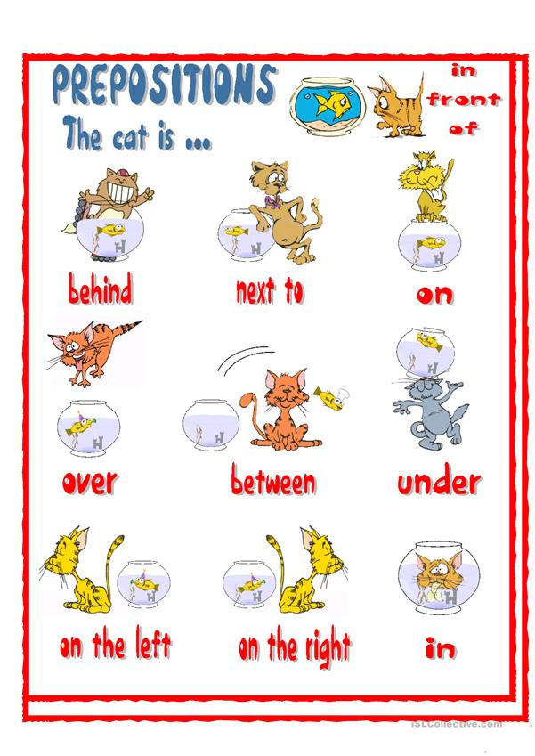 Prepositions The Cat Is Worksheet