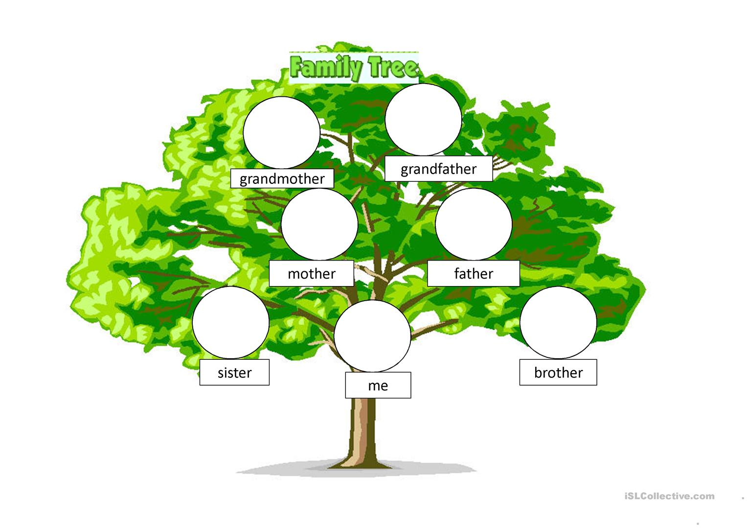 Beginners Family Tree Worksheet