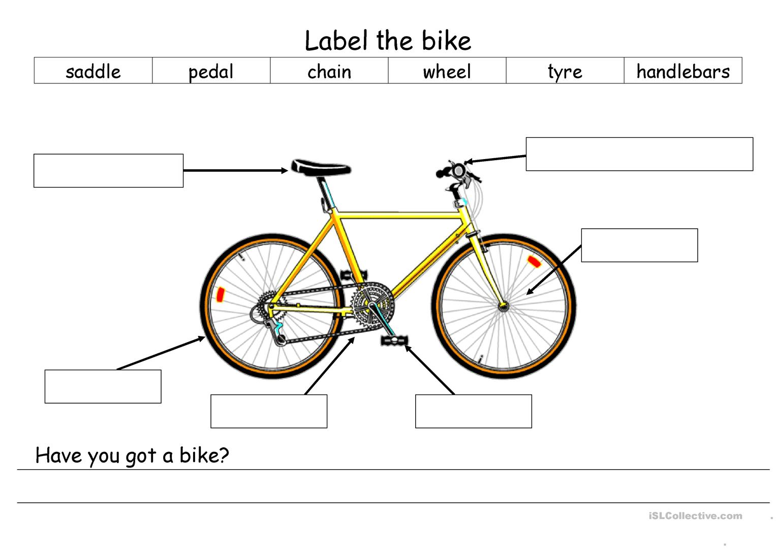 Label The Bike Worksheet