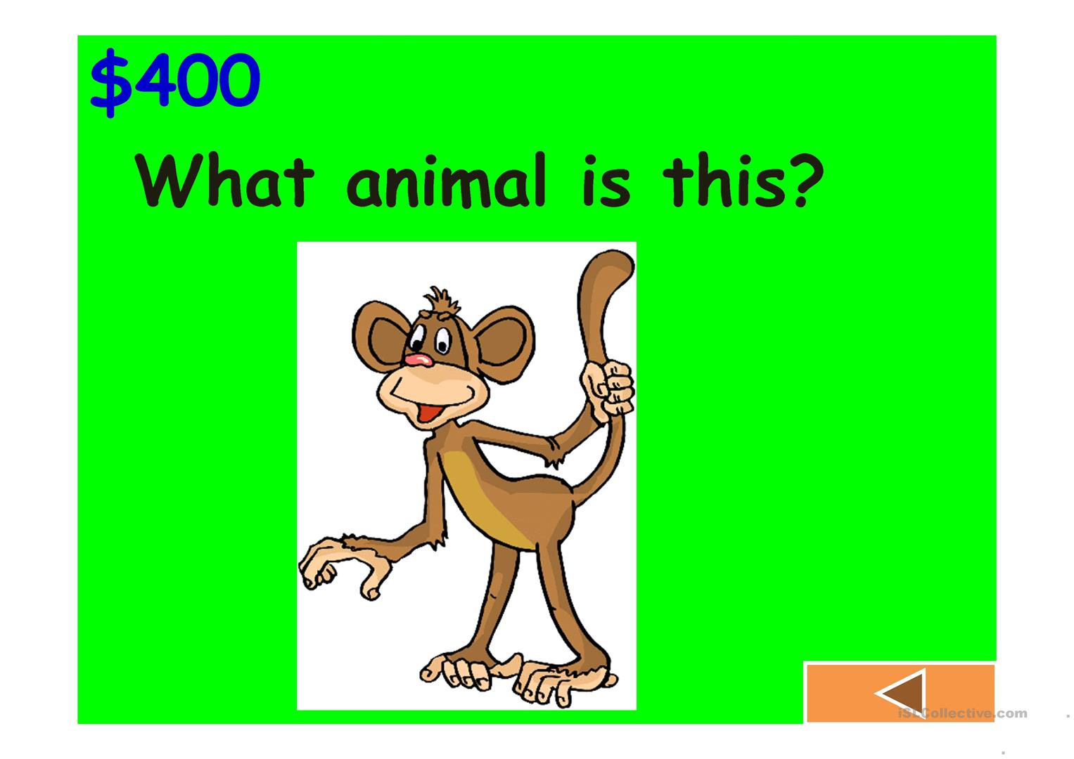 Jeopardy Game Body Animals Classroom Clothes And