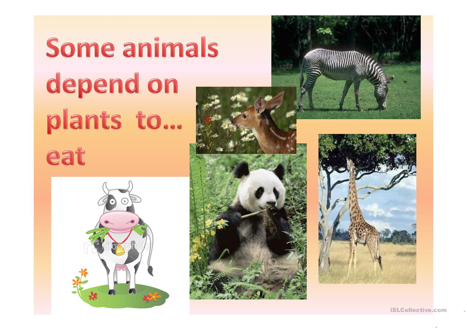 Animals Body Parts And Plants Worksheet