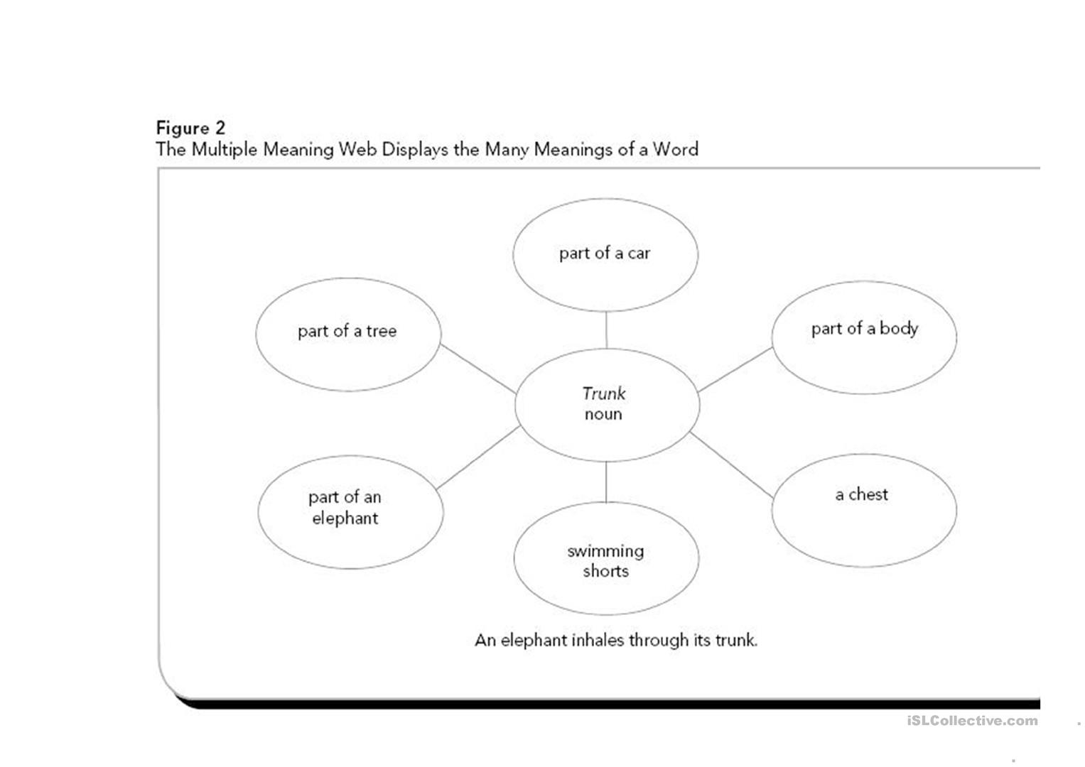 Multiple Meaning Word Graphic Organizer Worksheet