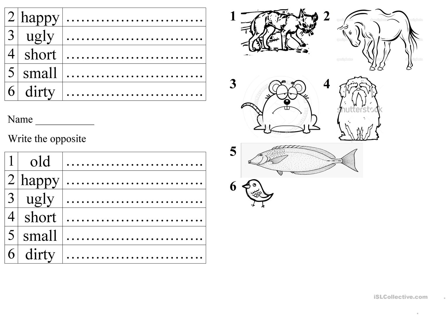 Pets And Opposite Adjectives Worksheet