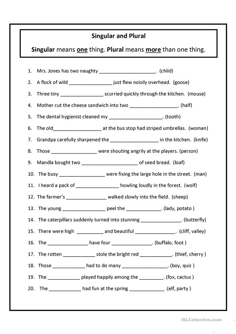 Singular And Plural Worksheet