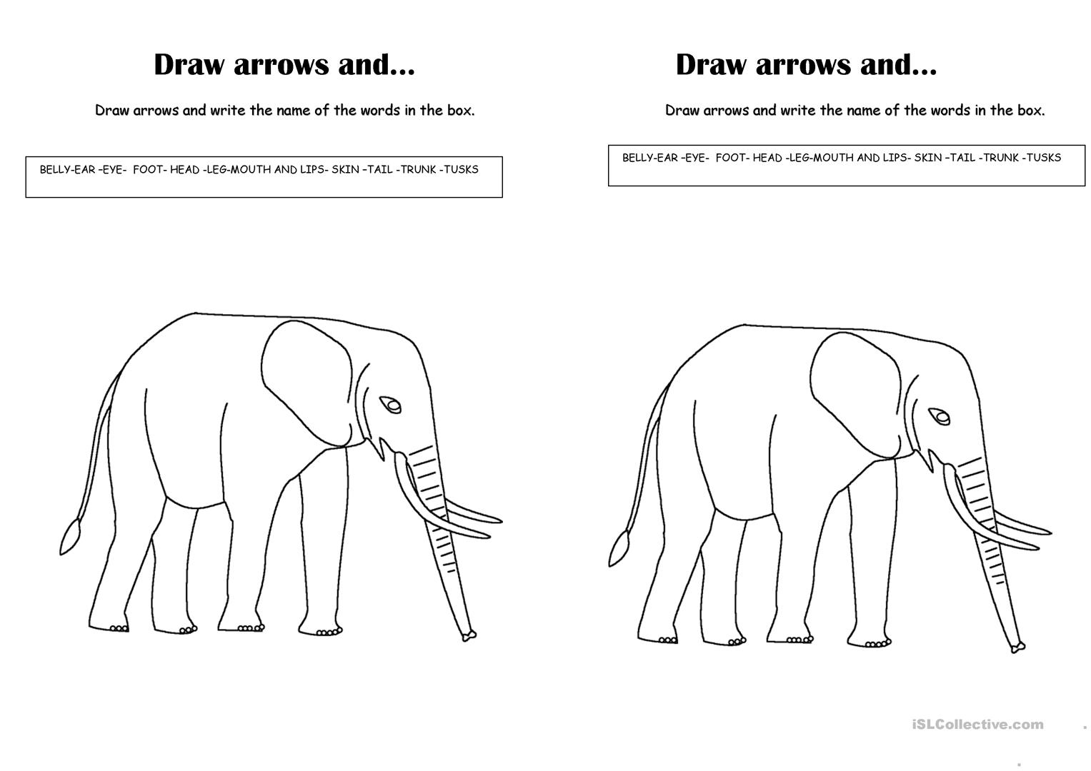 Draw Arrows And