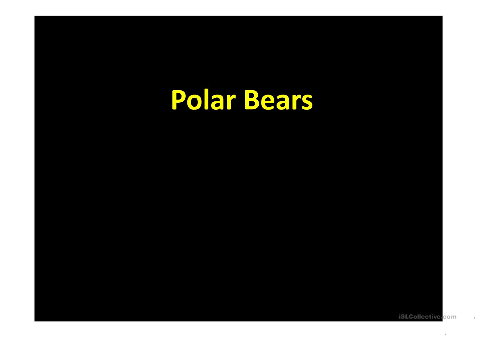 Polar Bears Worksheet