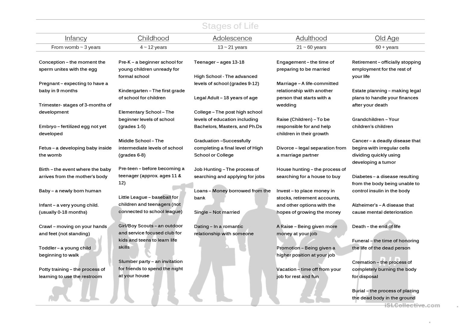 Stages Of Life Worksheet