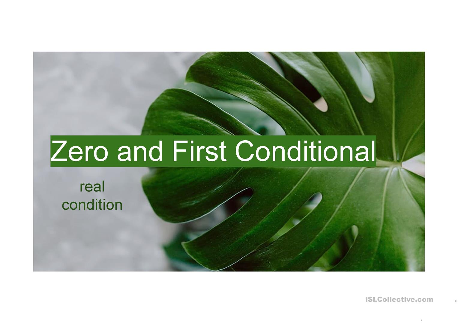 Zero And First Conditional
