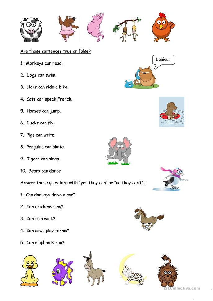 Animals And Abilities Worksheet
