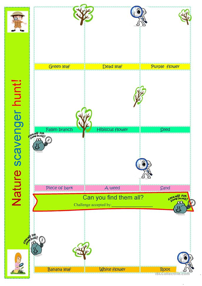 Vocabulary Comes Alive Nature Worksheet
