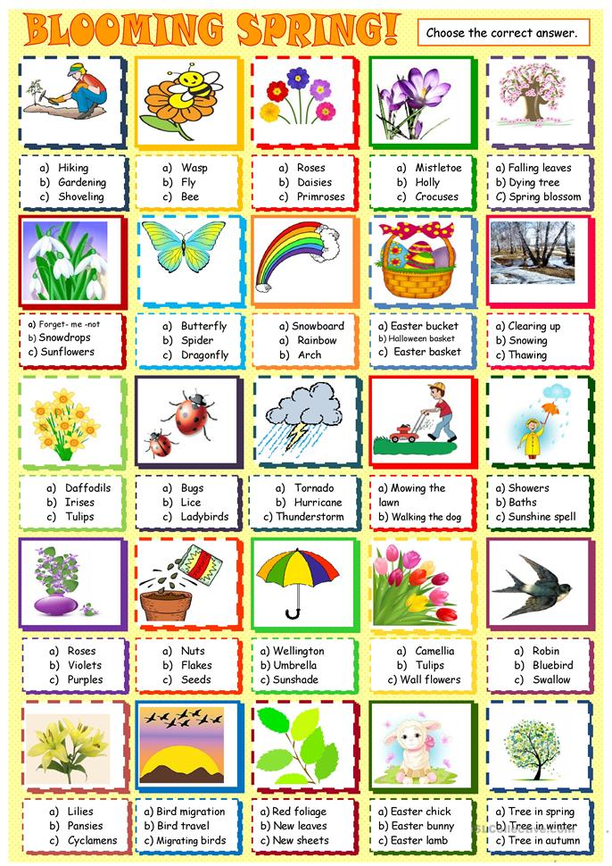 Spring Multiple Choice Activity Worksheet