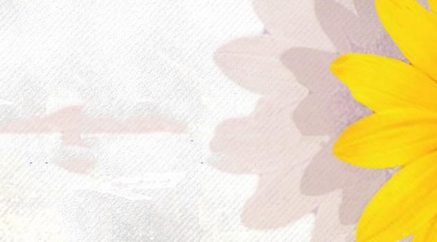 Varoşun Çiçekleri