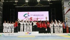 2010-07-20_(1589)x_masTaekwondo_WTFphoto_WTF2010_WorldCupTeam_Podio-FEMENINO