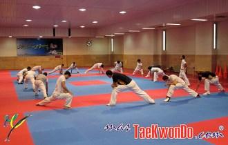 2010-11-03_(1869)x_TaekwondoPlanet_Greece-en-Iran_640_10