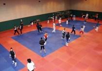 2011-04-27_(2183)x_masTaekwondoPlus_Photo-WTF_Gyeonggju-2011_03