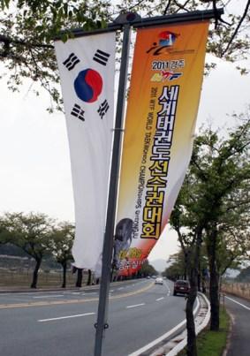 2011-04-27_(2183)x_masTaekwondoPlus_Photo-WTF_Gyeonggju-2011_07