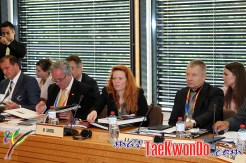 2013-06-07_WTF-Council-Meeting_19