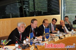 2013-06-07_WTF-Council-Meeting_22