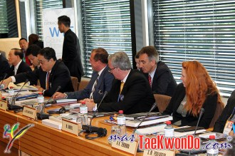 2013-06-07_WTF-Council-Meeting_26