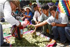 Coca leaves are part of Bolivia's indigenous population culture and medicine, and as such are recognized by the country's constitution
