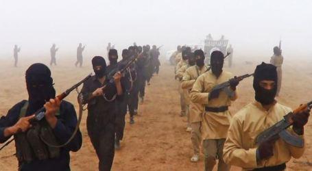 15,000 IZADI KURDS FIND REFUGE IN NORTH SYRIA: UNHCR