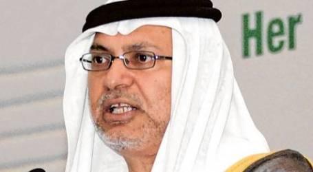 UAE SAYS 'AMAZED' BY JOE BIDEN'S SYRIA REMARKS