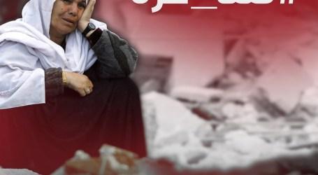 INTERNATIONAL ELECTRONIC CAMPAIGN TO LIFT GAZA SIEGE
