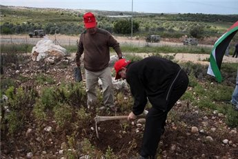 ISRAELI FORCES DETAIN PA OFFICIAL DURING TREE PLANTING DEMO
