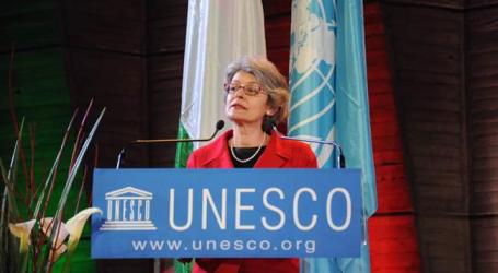 UNESCO DEMANDS EMERGENCY SECURITY COUNCIL SESSION OVER IRAQ ARTIFACTS