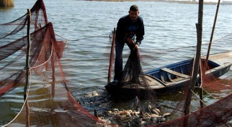 ARMED MILITIA KIDNAPS 21 EGYPTIAN FISHERMAN IN LIBYA