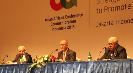 PALESTINE  HOPES ASIAN-AFRICAN SUPPORT WOULD END OCCUPATION