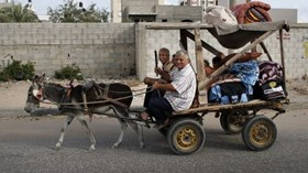 219 GAZAN REFUGEE FAMILIES TO RECEIVE SUPPORT FROM UNRWA