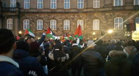 PRO-PALESTINE DEMONSTRATIONS IN EUROPE CONDEMN OCCUPATION ATTACKS