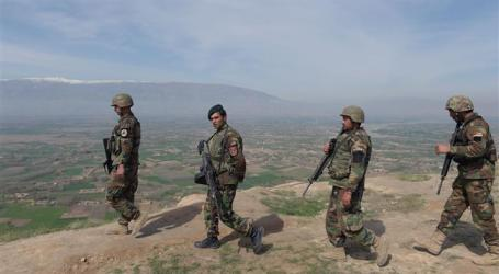 49 Militants Killed, Injured In Afghanistan: Kabul