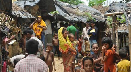 Nearly A Half-Million Rohingya  Refugees, Says UN Report