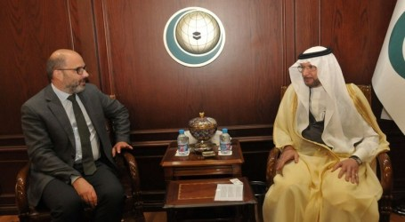 OIC Chief Holds Consultation with UN Humanitarian Coordinator for Palestine