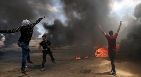 Palestinian Foreign Ministry Welcomes South Africa's Position on Gaza