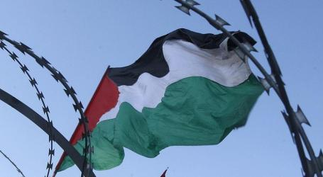PLO Calls for Collective International Action Against Israel's Intended Annexation Plan