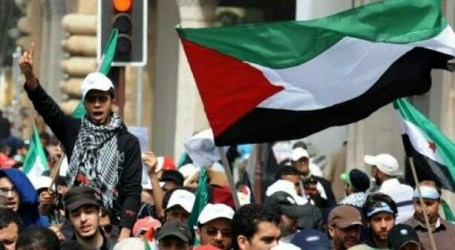 Netherlands Allow Gaza and the West Bank as Official Birthplace