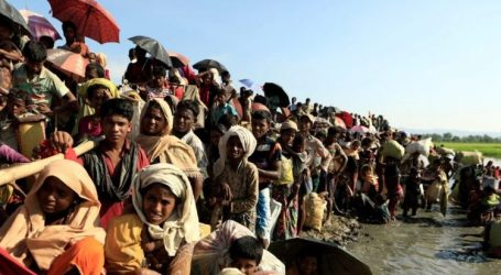MAPIM Urges Malaysian Authorities to Consider Repatriating Rohingya Refugees to Myanmar