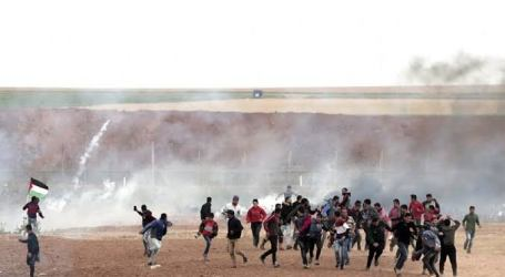 Israel Attacks Palestinian Workers at Separation Wall