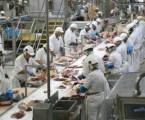 Poland Export Halal Meat Industry until 2025