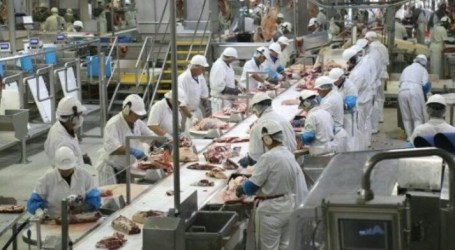 Poland Export Halal Meat Industry until 2025