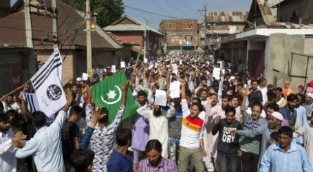 Kashmir Committe: UN Must Take Action on Indian Muslims' Genocide