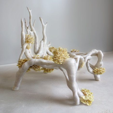 Mycelium-Chair-by-Studio-Eric-Klarenbeek-Dezeen