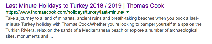 SERP result for holiday in Turkey