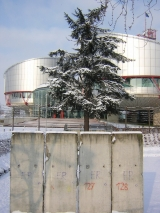 "<h5>Thanks francois</h5><p><a href=""http://commons.wikimedia.org/wiki/File:Piece_of_Berlin_Wall_in_front_of_the_European_Court_of_Human_Rights,_Strasbourg.jpg#mediaviewer/File:Piece_of_Berlin_Wall_in_front_of_the_European_Court_of_Human_Rights,_Strasbourg.jpg&quot;"" target=""_blank"">Piece of Berlin Wall in front of the European Court of Human Rights, Strasbourg</a>"" by <a class=""external text"" href=""http://www.flickr.com/photos/54576824@N00"" target=""_blank"" rel=""nofollow"">francois</a> from Strasbourg, france - <a class=""external text"" href=""http://www.flickr.com/photos/frenchy/79366435/"" target=""_blank"" rel=""nofollow"">Part of the berlin wall in front of the Human's Right building</a>. Licensed under <a title=""Creative Commons Attribution 2.0"" href=""http://creativecommons.org/licenses/by/2.0"" target=""_blank"">CC BY 2.0</a> via <a href=""//commons.wikimedia.org/wiki/"" target=""_blank"">Wikimedia Commons</a>.</p>"