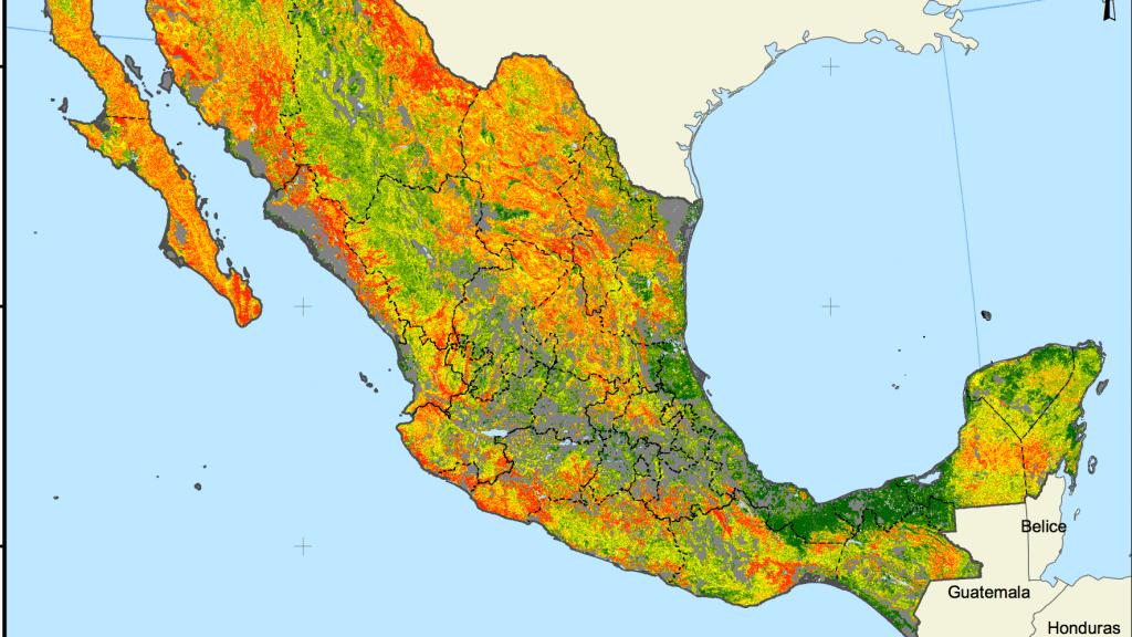 incendios en México