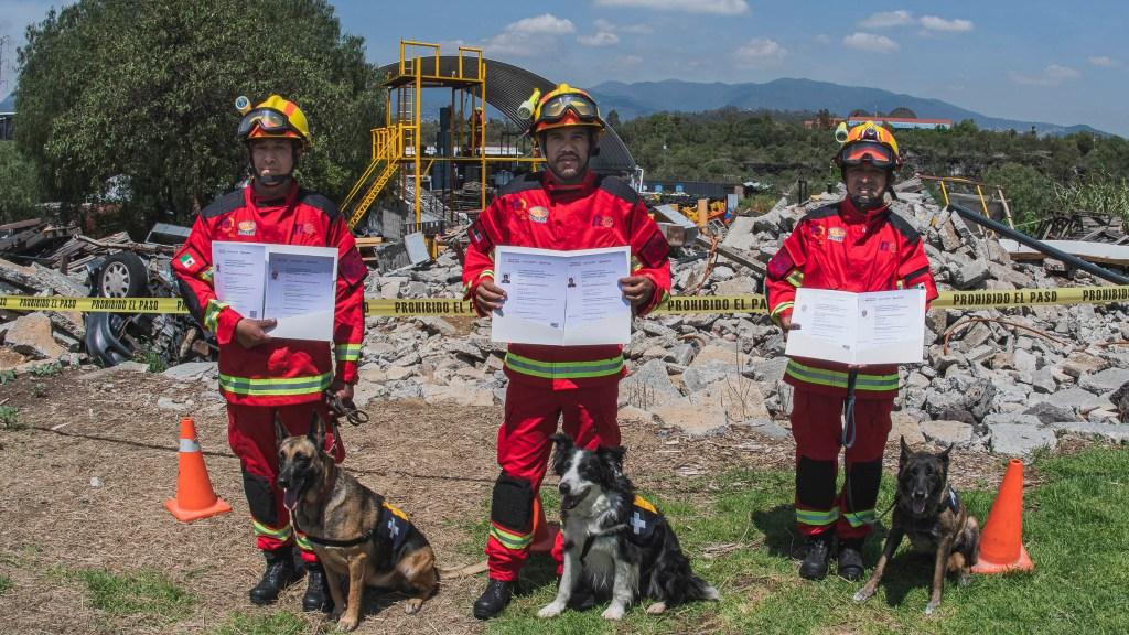 binomios caninos UNAM